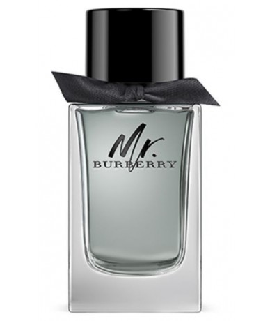 MR BURBERRY eau de toilette...