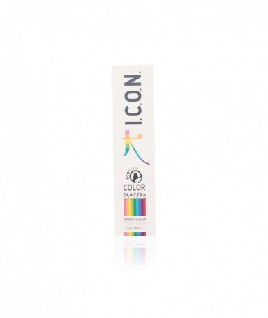 I.C.O.N. - PLAYFUL BRIGHTS...