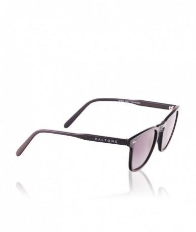 Paltons Sunglasses - BALI...
